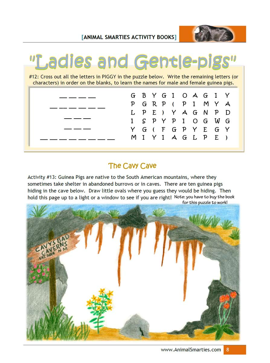 rabbit and cavy information rompin u0027 rabbits and cuddly cavy 4 h club