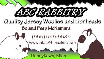 hot cool rockin rabbitry business card design