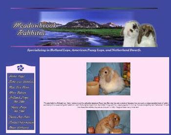 meadowbrook rabbitry holland lop website