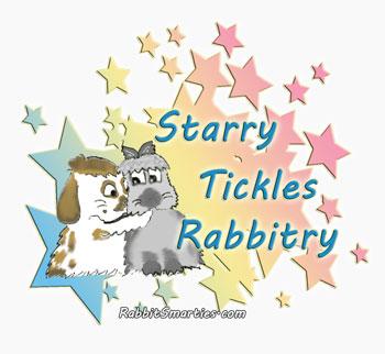 silly bunnies hand-drawn rabbity logo
