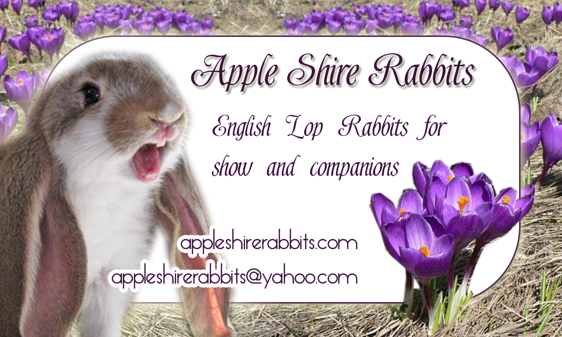 rabbitry biz card