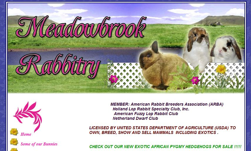 Meadowbrook Rabbitry - Click to Visit