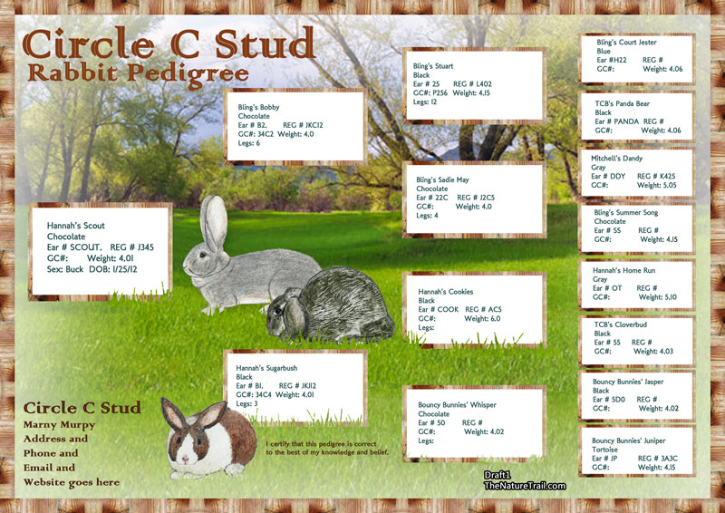 Bunnies in field pedigree design