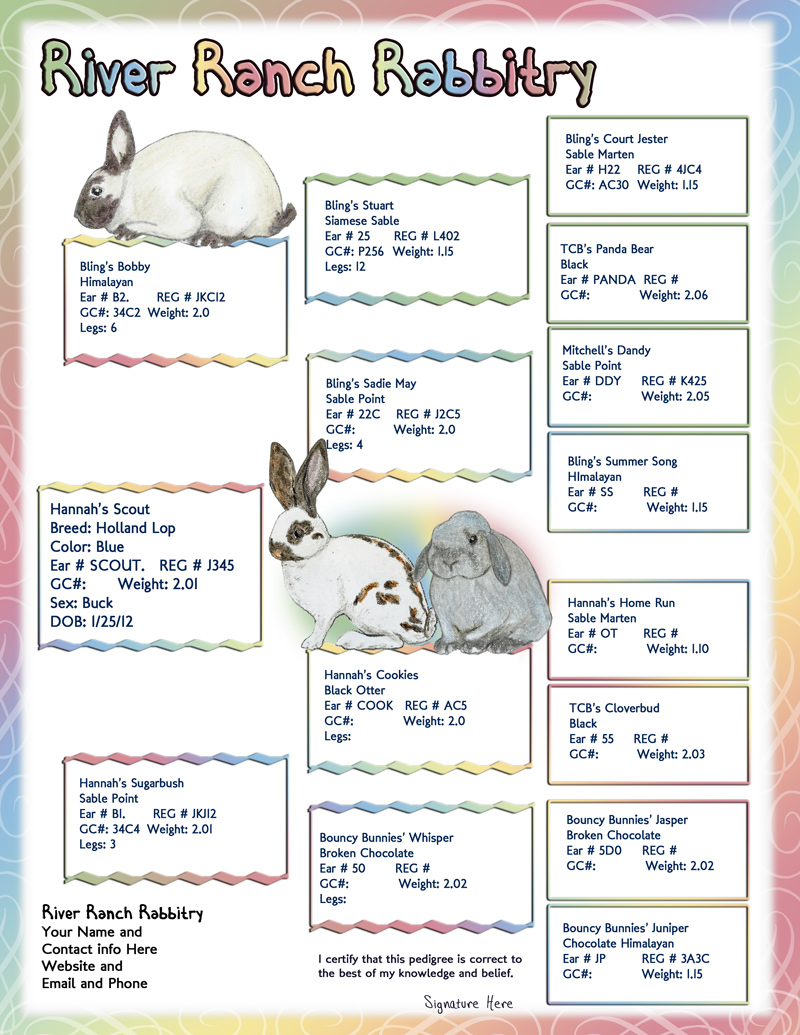 how to create pedigree rabbit papers
