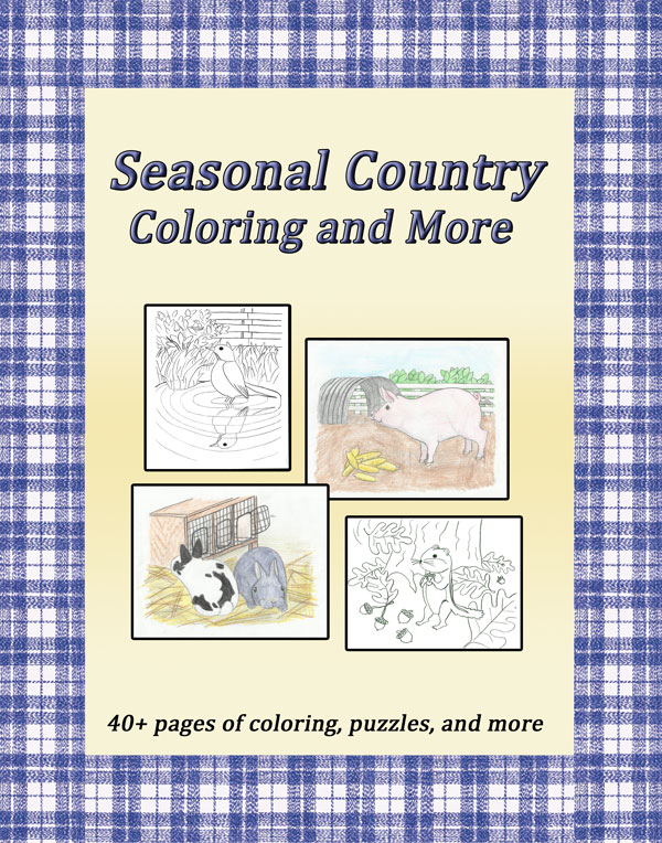 Country Coloring and Activity Puzzle Book