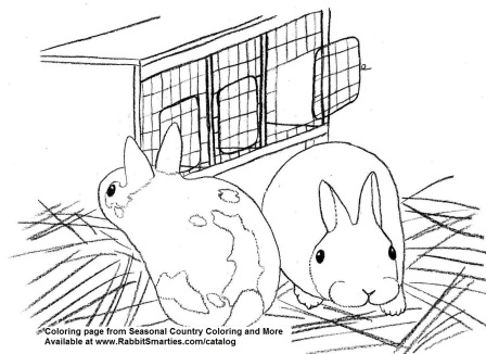 cute baby bunnies coloring page