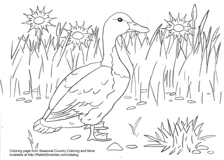 Swedish Duck farm coloring page