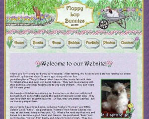 Holland lop breeder website in California