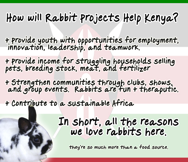 raising rabbits in africa