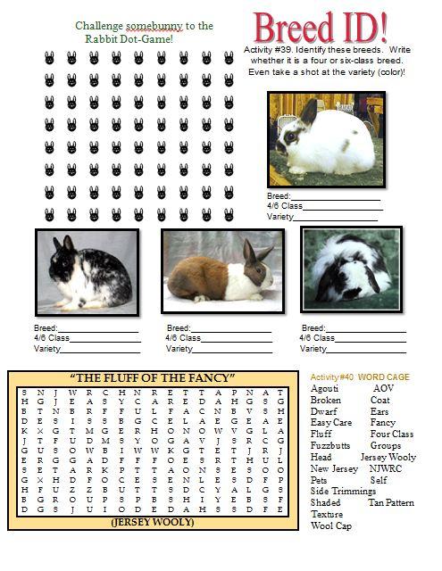 Rabbit Activity Book Rabbit Smarties Creative