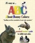 Rabbit Coat Color Genetics Study Guide