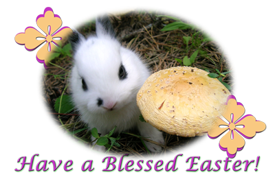 easter bunny greeting card image
